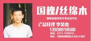 李昊洁——河南省鄢陵县绿州花木专业合作社