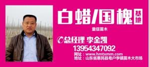 李金凯——惠民县童信苗木销售有限公司
