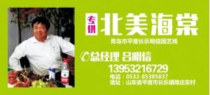 吕明信——山东省平度市明信园艺场
