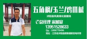 宋加宽——沭阳县新世纪花木繁育基地