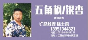 徐士来——邳州市硕森苗木种植有限公司