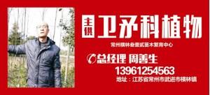 周善生——常州横林叁壹贰苗木繁育中心