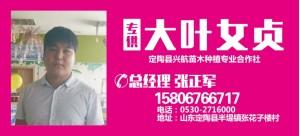 张正军——定陶县兴航苗木种植专业合作社