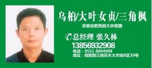 张久林——安徽省肥西县久林苗圃