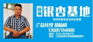 胡杨峰——徐州好苗会生态农业发展有限公司
