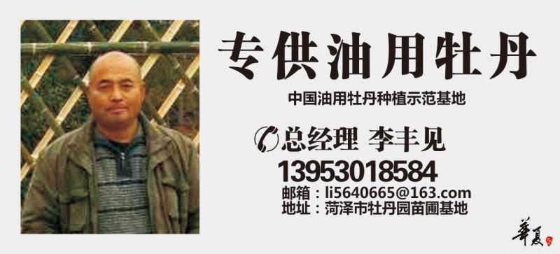李丰见(1)