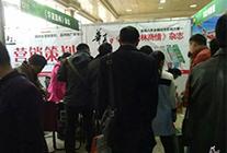 2016年河北林木种苗交易会—华夏园林参展 (7)