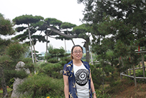 2015.7.7华夏园林参观鄢陵现代名优花木科技园