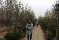 2010年华夏园林参展-浙江萧山 (408)