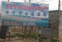 2010年华夏园林参展-山东济宁 (76)