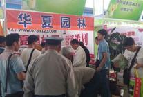 2015华夏园林参展-鄢陵花博会 (4)