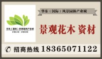 华东(国际)风景园林产业城