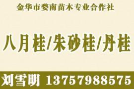 金华市婺南苗木专业合作社