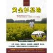 精品苗木供应:美国红枫、北美枫香、黄金杉