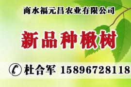 商水福元昌农业有限公司