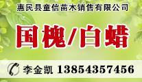惠民县童信苗木销售有限公司