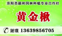淮阳县颖和园林种植专业合作社