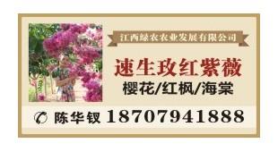陈华钗——江西绿农农业发展有限公司