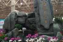 2017年第六届黄河三角洲(滨州·惠民)绿化苗木博览会