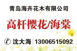 青岛海卉花木有限公司
