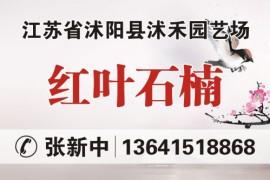 江苏省沭阳县沭禾园艺场