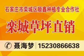 石家庄市栾城区顺鑫种植专业合作社