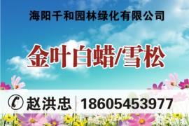 海阳千和园林绿化有限公司