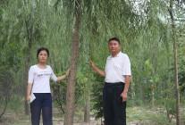 2017.7.22-25华夏园林对商丘会员进行苗圃基地考察 (270)