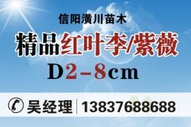 河南省绿川生态园林有限公司