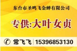 东台市圣鸣飞金蝉有限公司