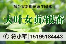 东台市新街镇态生园林