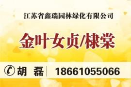 江苏省鑫瑞园林绿化有限公司