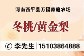 河南省西平县万福家庭农场