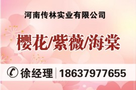 河南传林实业有限公司