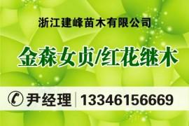 浙江建峰苗木有限公司