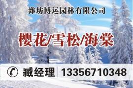 潍坊博运园林有限公司