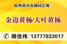 杭州萧山众诚园艺场