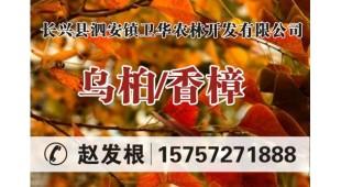 赵发根——浙江省长兴县泗安镇卫华农林开发有限公司