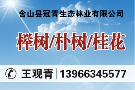 含山县冠青生态林业有限公司