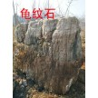 风景石~龟纹石