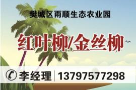 樊城区雨顺生态农业园