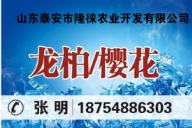 山东泰安市隆徕农业开发有限公司