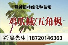 江西九江绿神园林绿化种苗场