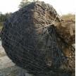绿化园林树根移植网 包树根钢丝网 树根移植网厂家