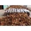 河南建海机械设备有限公司,供应松树皮